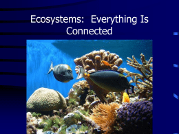 Ecosystems: Everything Is Connected