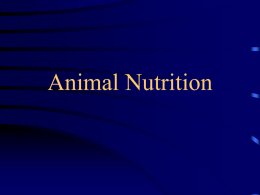 Animal Nutrition - Tarleton State University