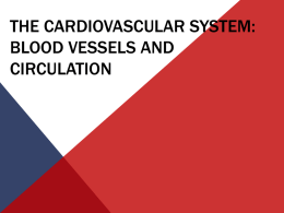 Cardiovascular - Greenville Technical College