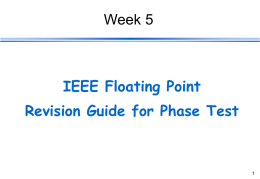 IEEE Floating Point Instructions
