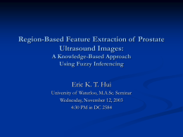 Region-Based Feature Extraction of Prostate Ultrasound