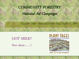 COMMUNITY FORESTRY National Ad Campaign