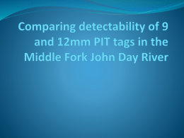 Comparison of PIT Tag detectability – 9mm vs. 12mm
