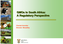 GMOs in South Africa: A Regulatory Perspective
