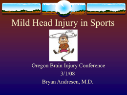 Mild Brain Injury Rehabilitation Issues Bryan Andresen, M.D.