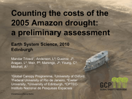 Counting the costs of the 2005 Amazon drought: a