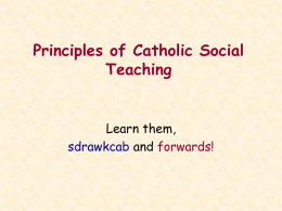 Principles of Catholic Social Teaching