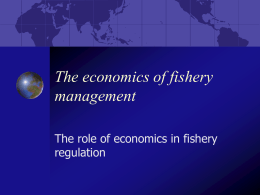 The economics of fishery management
