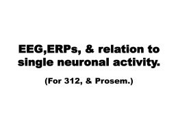 EEG,ERPs, & relation to single neuronal activity.