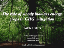 "Woody biomass energy crops as a ""carbon dioxide pump"