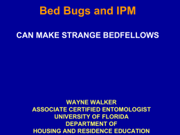 Bed Bugs and Green Pest Control