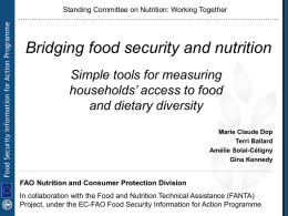 Bridging food security and nutrition indicators for