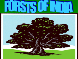 FORESTS OF INDIA Flora (forests) and (fauna) are one of