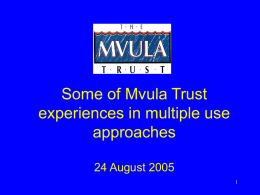 Some of Mvula Trust experiences in multiple use approaches