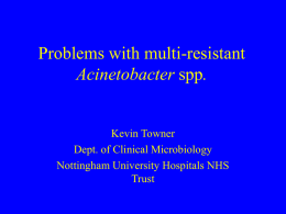 Multiresistant outbreaks of Acinetobacter: how long before