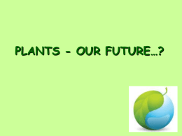 PLANTS IN THE FUTURE