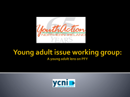 Young adult issue working group