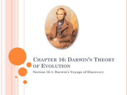 Chapter 16: Darwin's Theory of Evolution