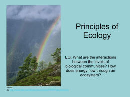Principles of Ecology - H.S.H.P. Biology
