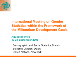 International Meeting on Gender Statistics