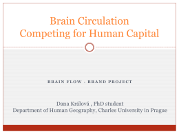 Brain Circulation - Competing for Human Capital