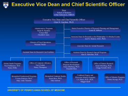 Vice Dean for Research and Research Training