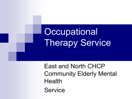 Occupation and Memory group