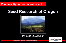 Gray Leaf Spot - Seed Research of Oregon