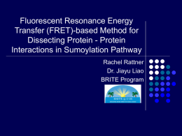 Fluorescent Resonance Energy Transfer (FRET)