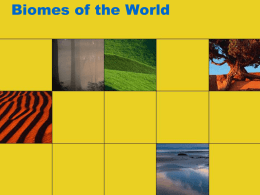 Biomes of the World - Mrs.Cain's World Geography
