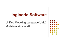 Inginerie Software