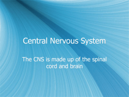 Central Nervous System - Francis Howell High School