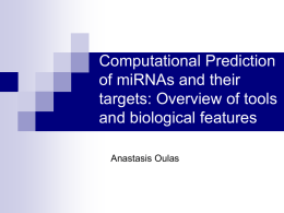 Computational Prediction of miRNAs and their targets
