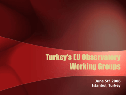 Turkey's EU Observatory Working Groups