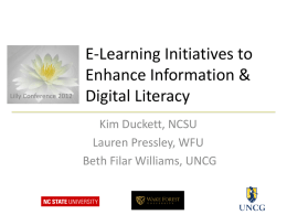 E-Learning Initiatives to Enhance Information and Digital