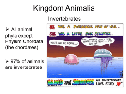 Kingdom Animalia - University of Indianapolis