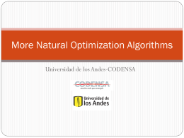 More Natural Optimization Algorithms