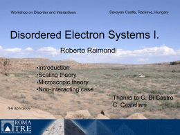 Disordered Electron Systems