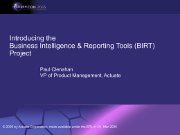 Introducing the BIRT Project
