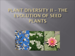 Plant Diversity II – The Evolution of Seed Plants