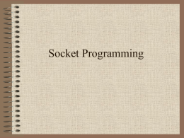Socket Programming - Wichita State University