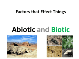 Factors that Effect Things