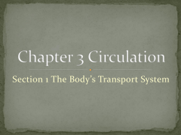Chapter 3 Circulation