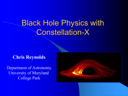 Future X-ray studies of black holes