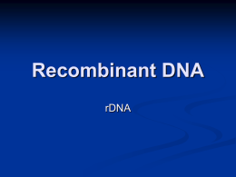 Recombinant DNA - Richmond School District