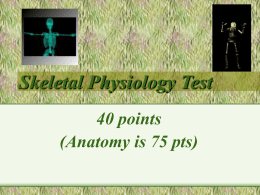 Skeletal Physiology Test