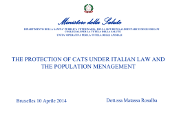 The protection of cats under Italian law and the