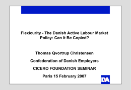 Labour Market Mobility in a Danish Perspective