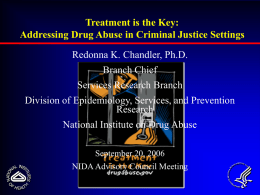 Improving Drug Abuse Services in Criminal Justice Settings