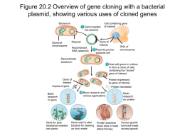 Figure 20.2 Overview of gene cloning with a bacterial